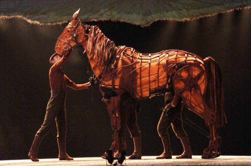 War Horse Australia Joey