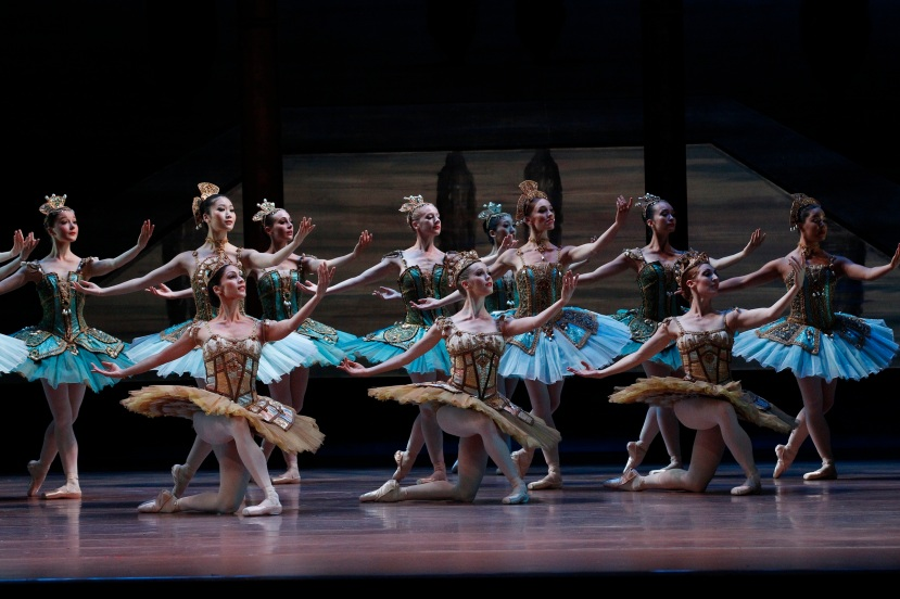 Artists of The Australian Ballet Don Quixote 2013