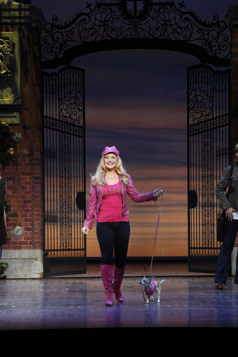 Legally Blonde Lucy Durack as Elle Wods, Bruiser
