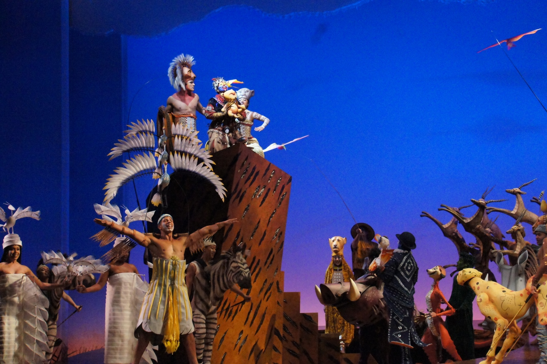 the lion king pride rock on broadway pdf