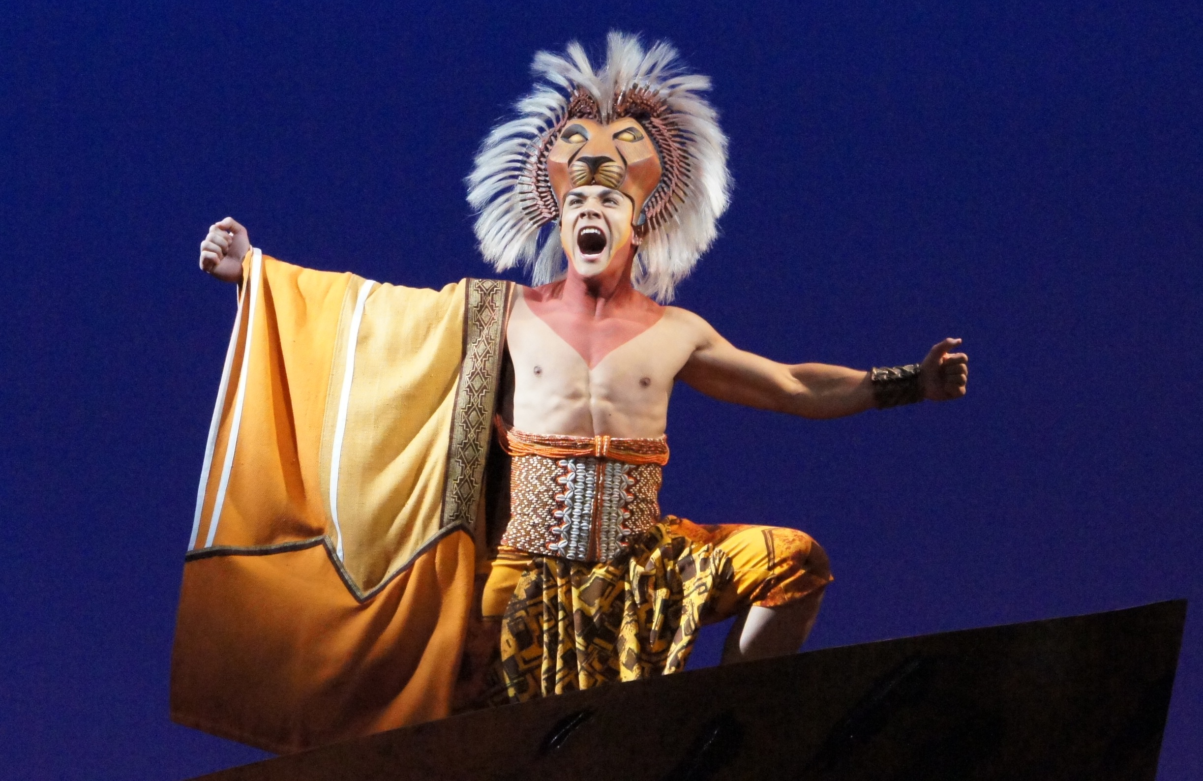lion king the musical review The lion king is a musical based on the 1994 disney animated film of the same name with music by elton john and lyrics by tim rice along with the musical score.