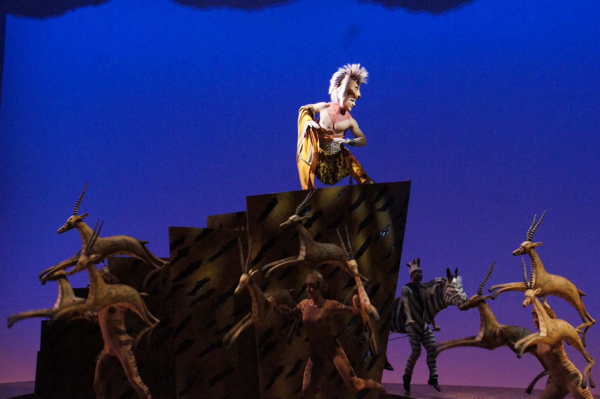 the lion king sydney  sneak peek  u2013 simon parris  man in chair