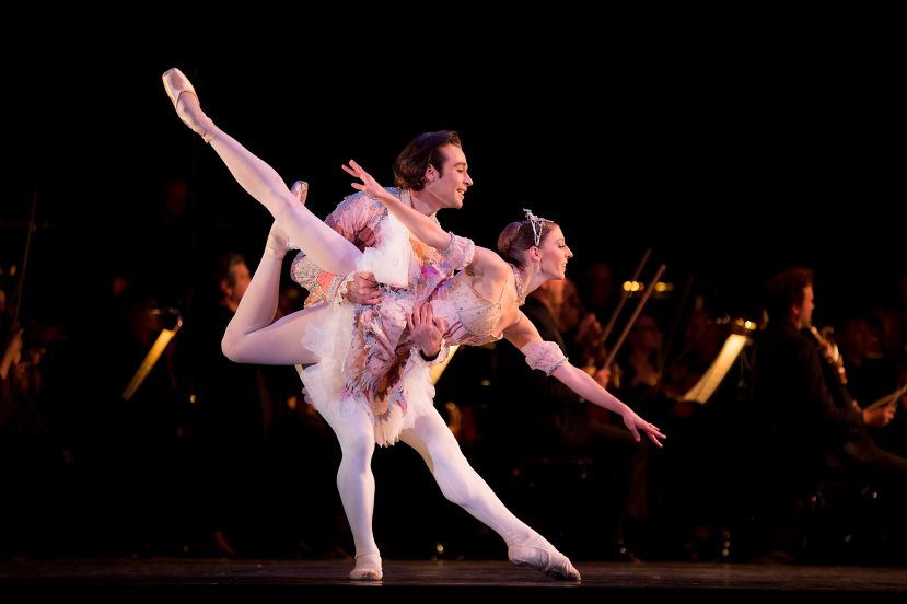 Daniel Gaudiello, Lana Jones, Telstra Ballet in the Bowl 2014, The Australian Ballet