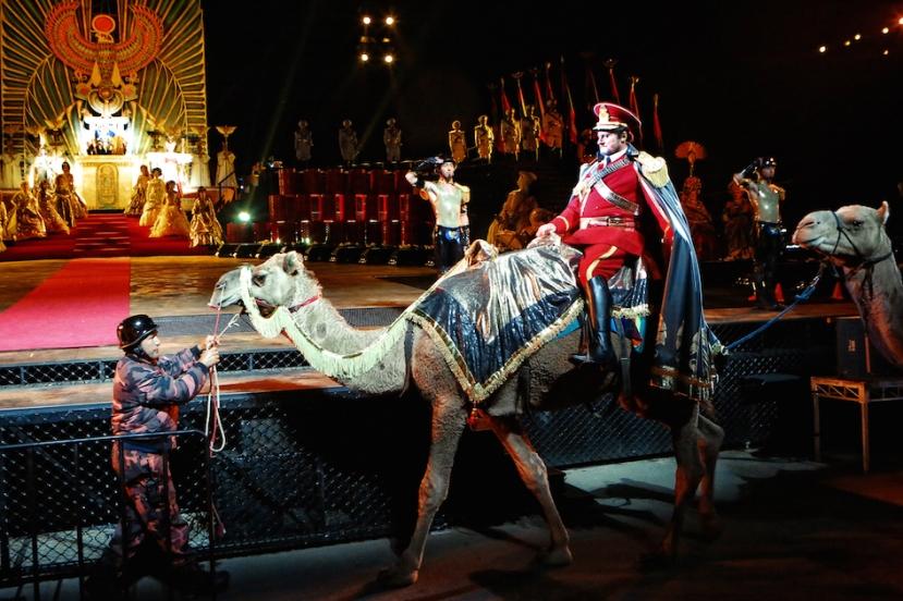 Aida 2015 Handa Opera on Sydney Harbour, Walter Fraccaro, camel