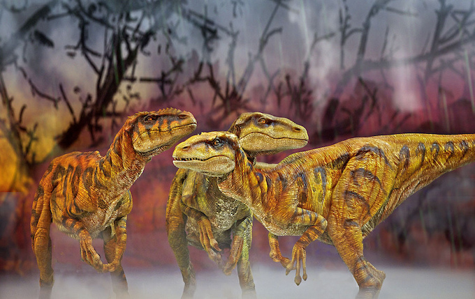 Walking with Dinosaurs Arena Spectacular, Utahraptors