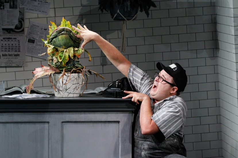 LITTLE SHOP OF HORRORS 2016 Audrey II,-Brent-Hill