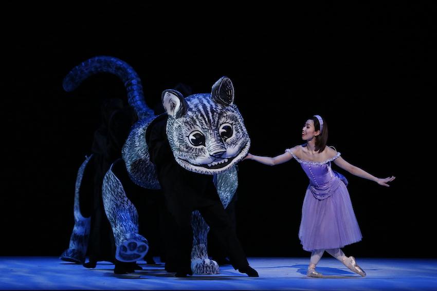 Alice's Adventures in Wonderland, The Australian Ballet, Ako Kondo as Alicesimonparrismaninchair
